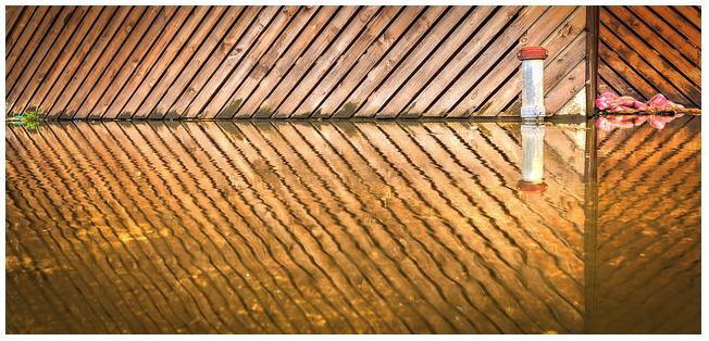 Olympic Park Photo Walk 7-2 by Kris McConkey